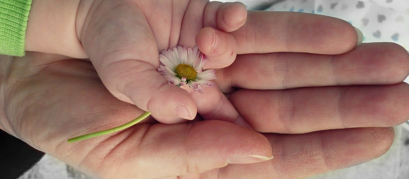 Image shows a small childs hand on top of an adults hand.