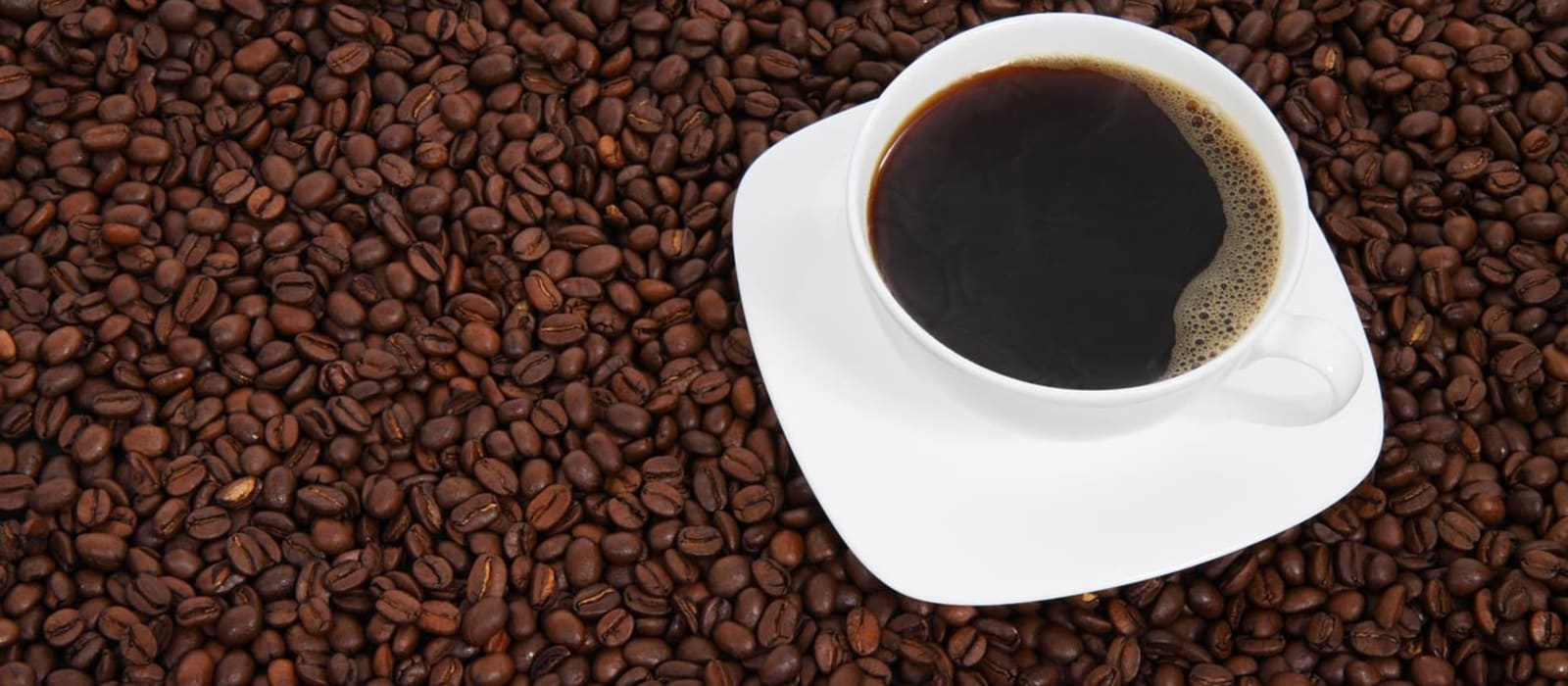Image shows a high shot of a cup of coffee sitting on a bed of coffee beans